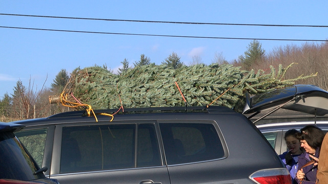 National Christmas tree shortage Vermont farmer says not here