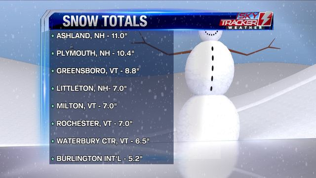 Sunday Snow Totals Throughout the Chicago Space