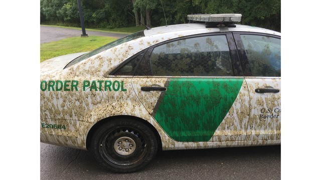 Alburgh man pleads guilty to spraying Border Patrol cruiser with cow manure