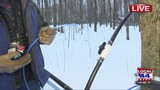 AM-LIVE: Maple tree tapping at Shelburne Sugarworks