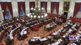 VT House gives preliminary OK to state abortion rights bill