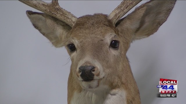 Vermont moves forward on overhaul of deer hunting rules